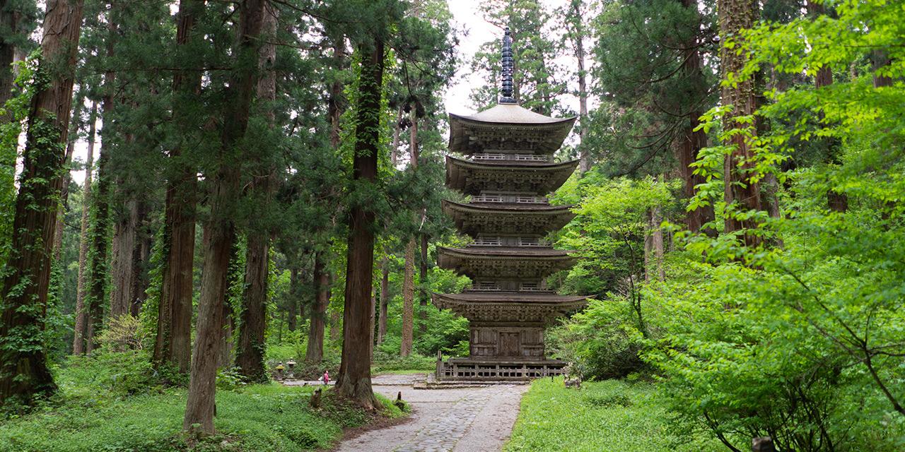 森の奥深くに佇む荘厳な五重塔(国宝)を目の当たり