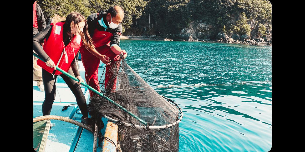 漁船ツアーで、固定網から釣りスポットまで、波打つ青い海を航行