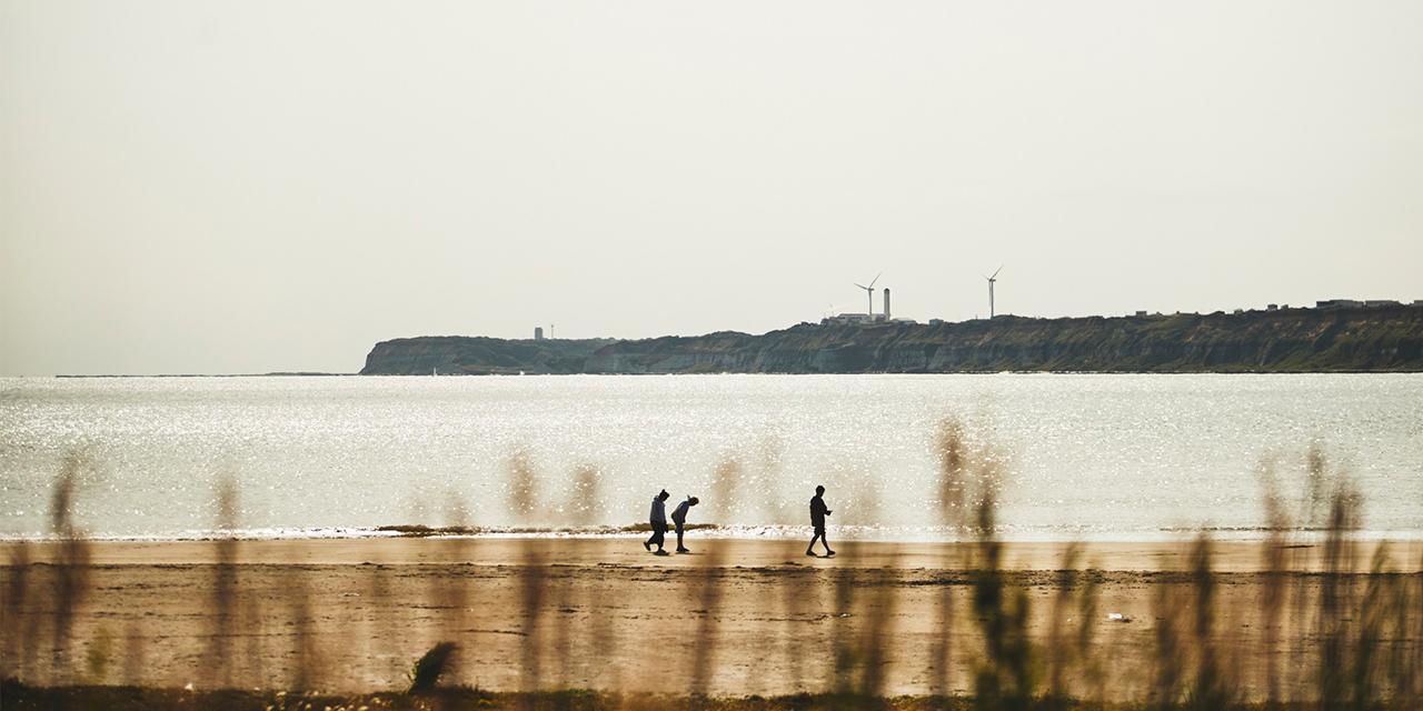 房総半島の豊穣な海と大地を辿る非日常のドライブ