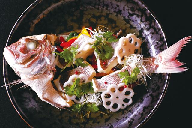 遠州灘・駿河湾・浜名湖などで採れた新鮮な魚貝